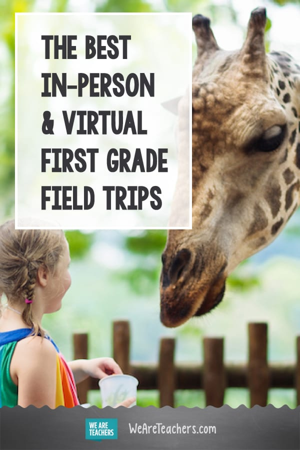The Best In-Person and Virtual First Grade Field Trips