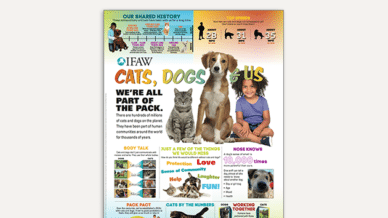 Cats, Dogs and Us - Classroom Poster