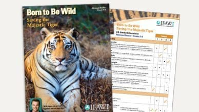 Grades 6-8: Born to Be Wild - Lesson Plan