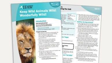 Grades K-2: Keep Wild Animals Wild - Lesson Plan