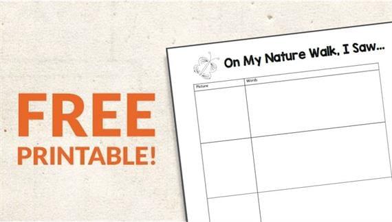 Free Printable On My Walk Observation Sheets Weareteachers
