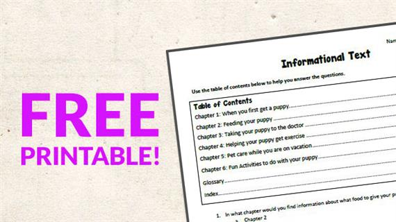image relating to Table of Contents Printable named Free of charge Printable: Informational Phrases Worksheet - WeAreTeachers
