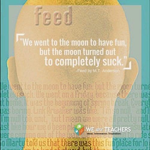 1-feed