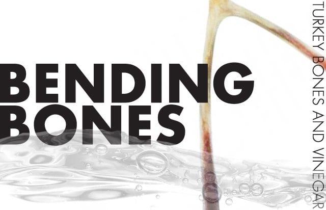 Bending-Turkey-Bones