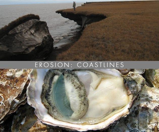 Erosion-Coastlines