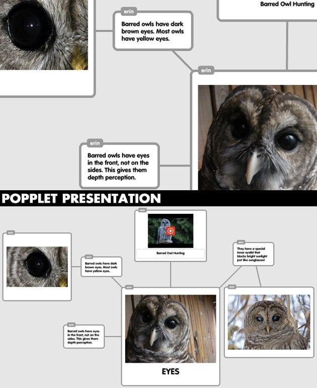 Popplet-Presentation