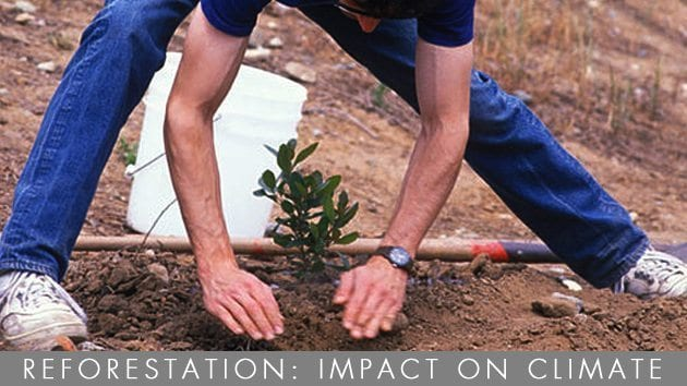 Reforestation--Impact-on-Climate