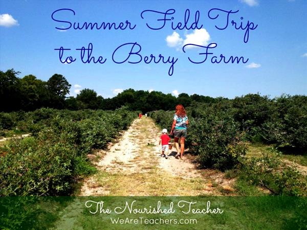 Summer Field Trip to the Berry Farm