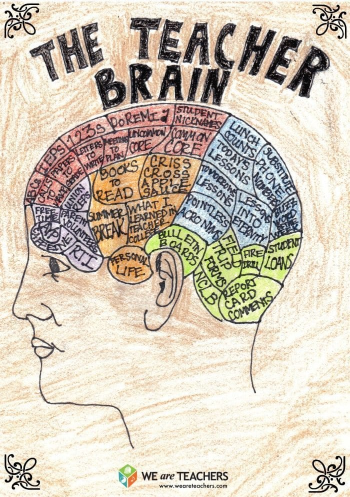The Teacher Brain: A Helpful Guide