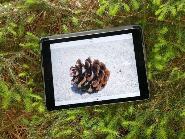 Use iPads Outside with Preschoolers