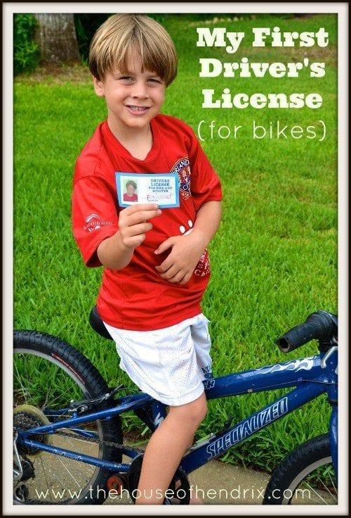 SJ Drivers License