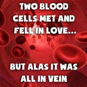 Use Humor to Teach Biology
