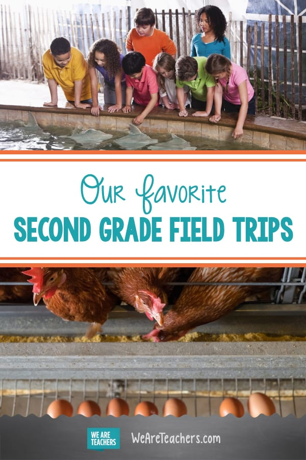 Our Favorite Second Grade Field Trips (Virtual and In-Person, Too!)