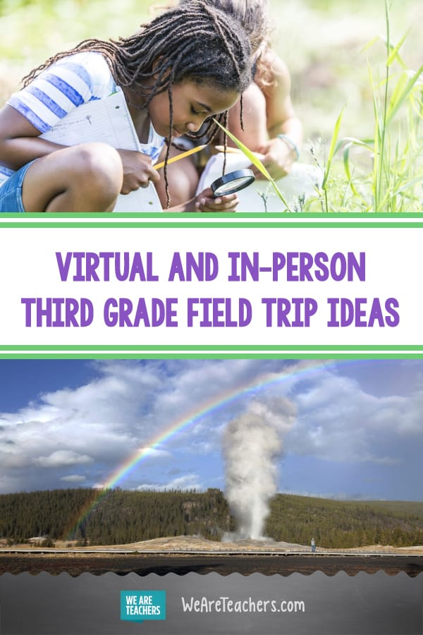 Check Out These Virtual and In-Person Third Grade Field Trip Ideas