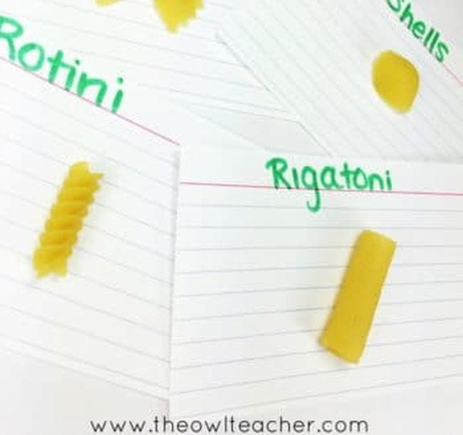 Index cards with various pasta types glued to them, including rotini, rigatoni, and shells (Fourth Grade Science)