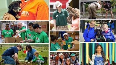 50 Ideas for Volunteering