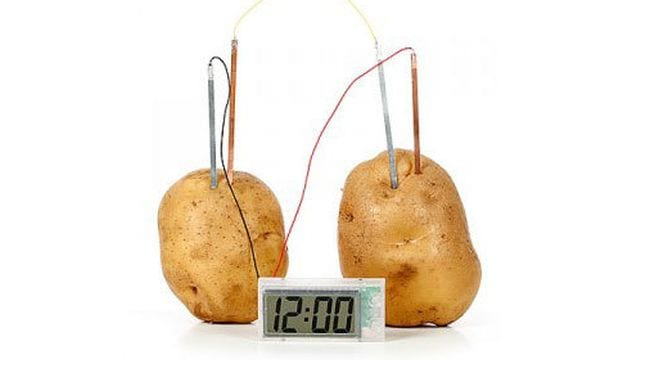 Two potatoes with electrical wires running from them to a small digital clock