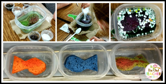 7 Genius Research Projects for PreK-3 Students You Will Definitely Want to Try