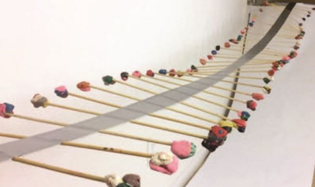 Series of sticks held together by duct tape, with clay on the ends of the sticks