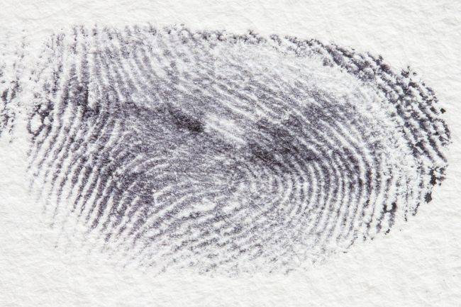 8th Grade Science Fingerprints Pixabay Image
