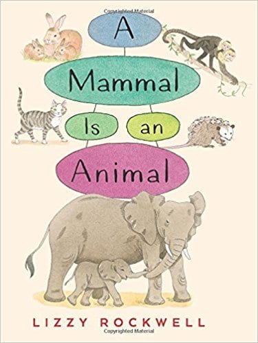 Book cover for A Mammal is an Animal, as an example of Earth Day books for kids