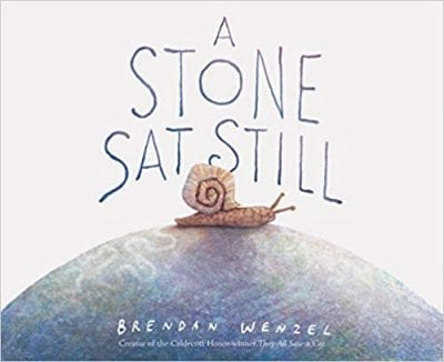 Book cover for A Stone Sat Still