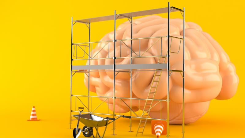 A student's brain learning through scaffolding -- What is scaffolding in education