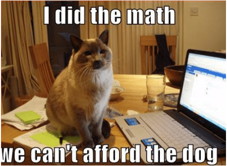 I did the math. We can't afford the dog.