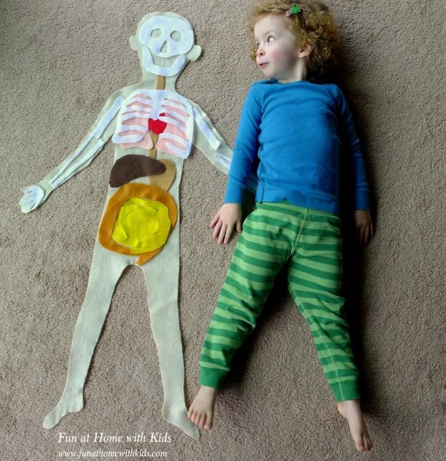 Anatomy Activities Fun At Home With Kids