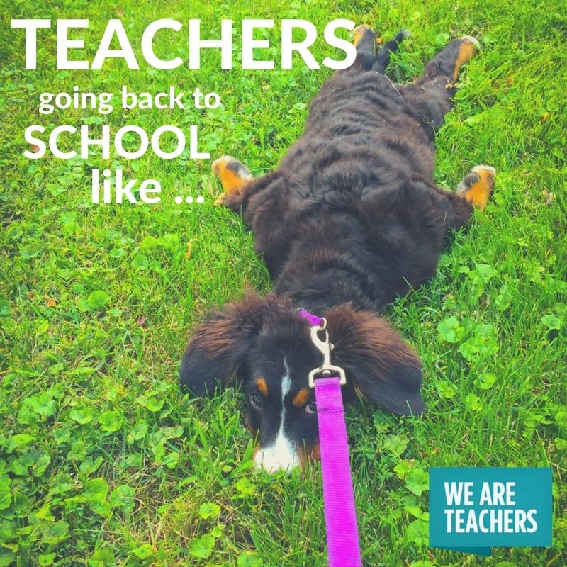 Summer Teacher Memes