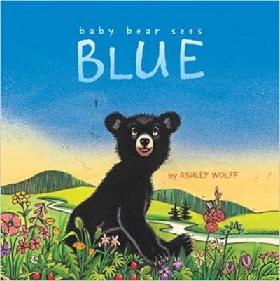 Baby Bear Sees Blue Book