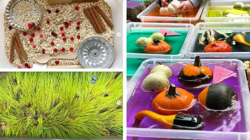 Best Preschool Sensory Table Ideas