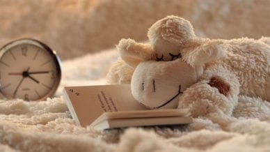 A stuff toy mouse reading a book in bed