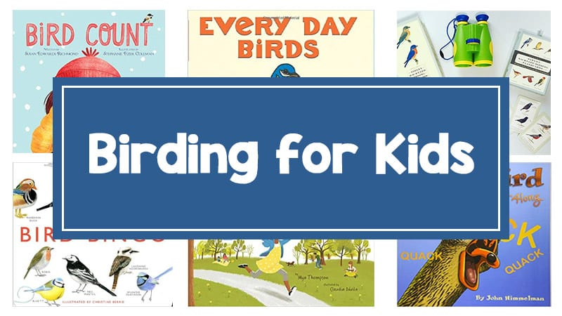 Still of post sharing tips for birding with kids