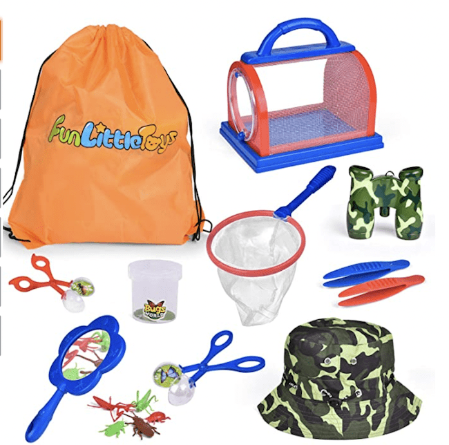 Items in a bug catching kit for kids
