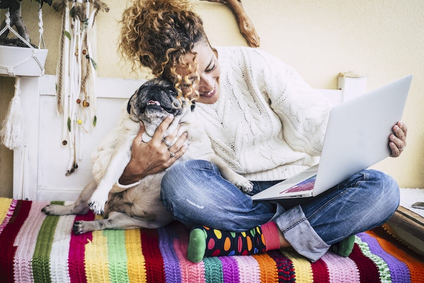 Woman on computer with puppy shopping teacher rewards program