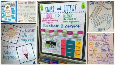 Collage of Cause and Effect Anchor Charts