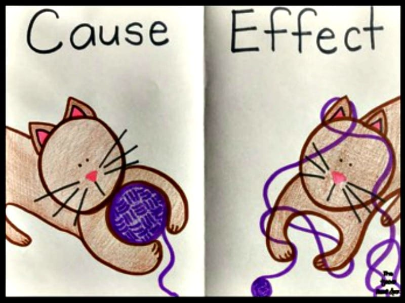 Cause and effect pictures of a cat with purple yarn