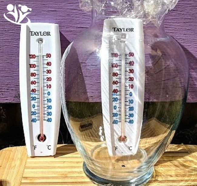 Two thermometers, one inside a covered glass jar. The jar thermometer shows a temperature 20 degrees higher. (Climate Change Activities)