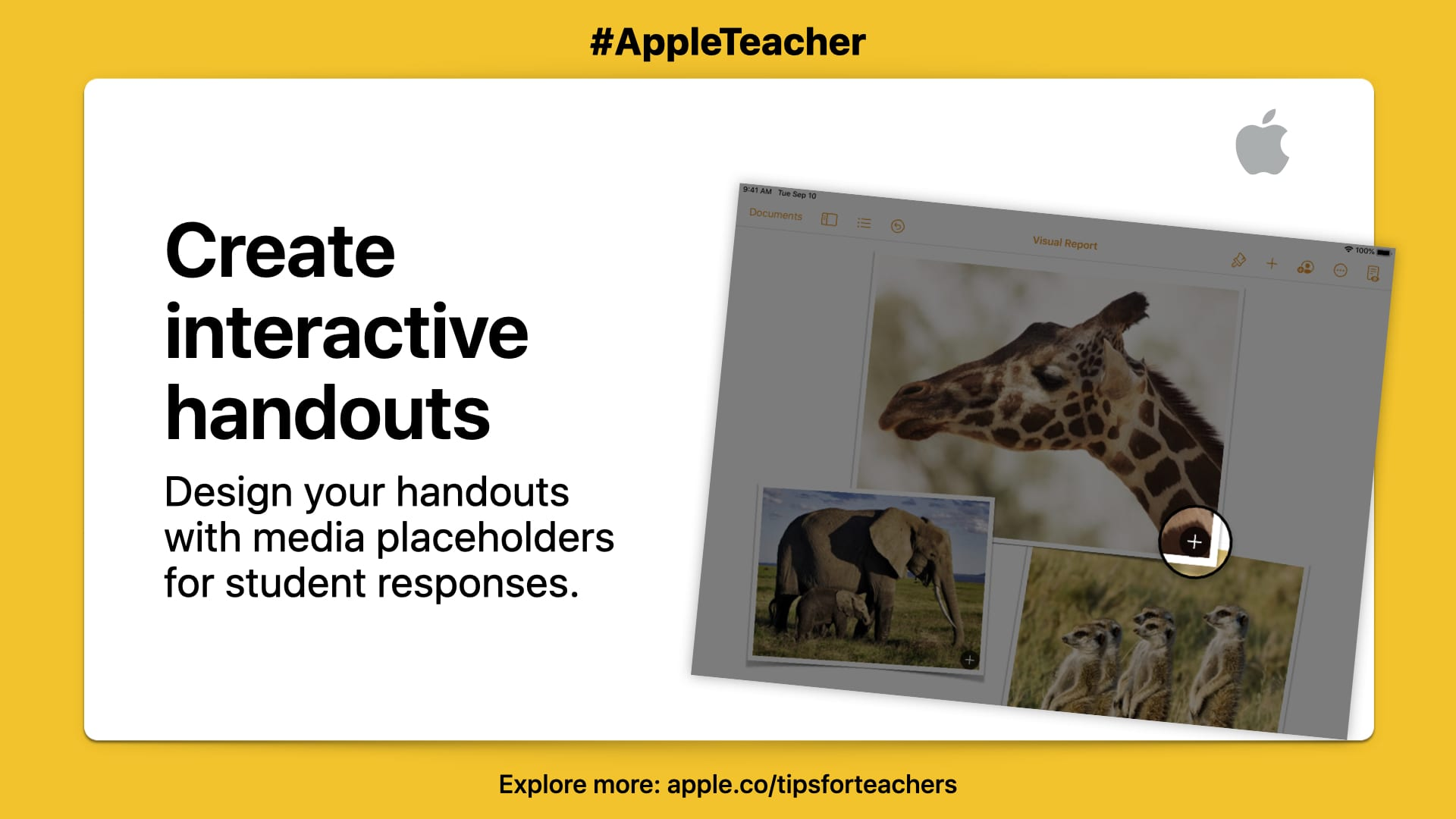 """Design your handouts with media placeholders for student responses."" Picture of giraffe on white background with yellow border."