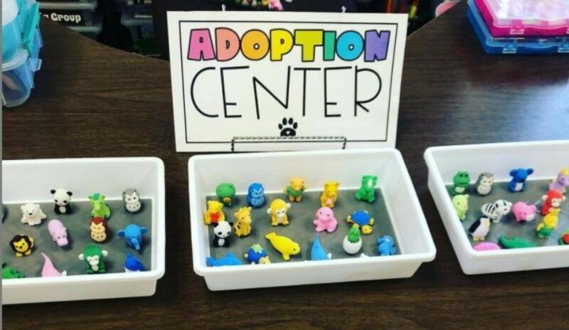 Desk pet adoption center