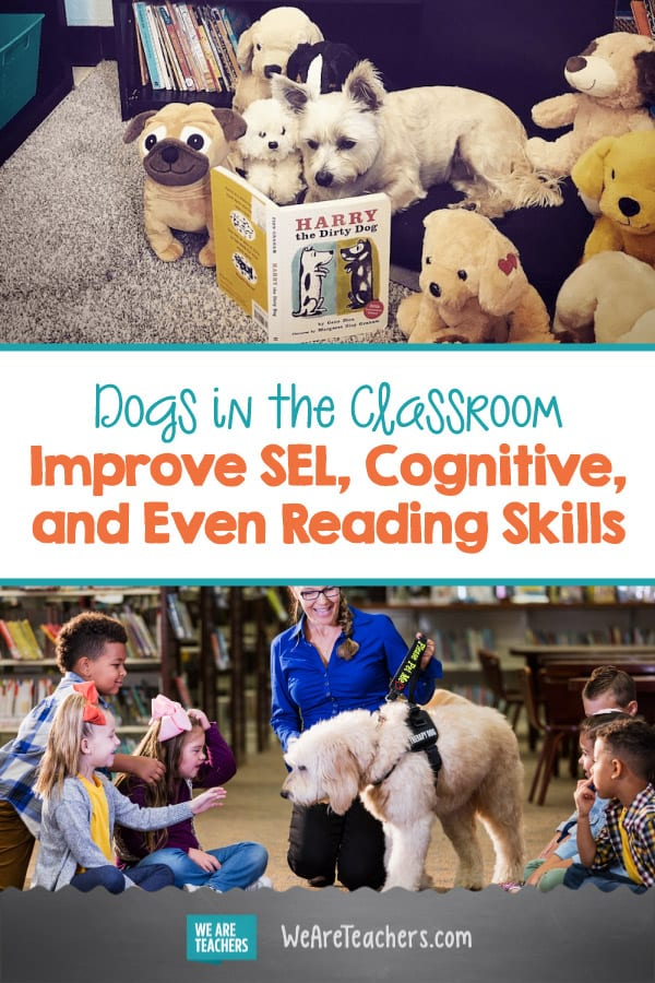Dogs in the Classroom Improve SEL, Cognitive, and Even Reading Skills