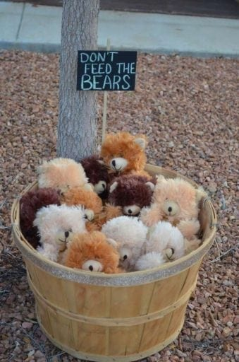 Don't feed the bears critter collection for a camping theme classroom.