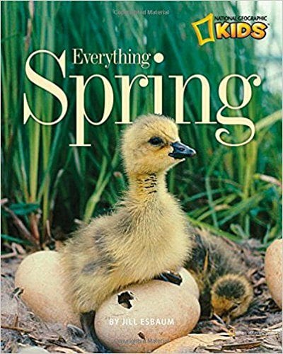 Book Cover for Everything Spring