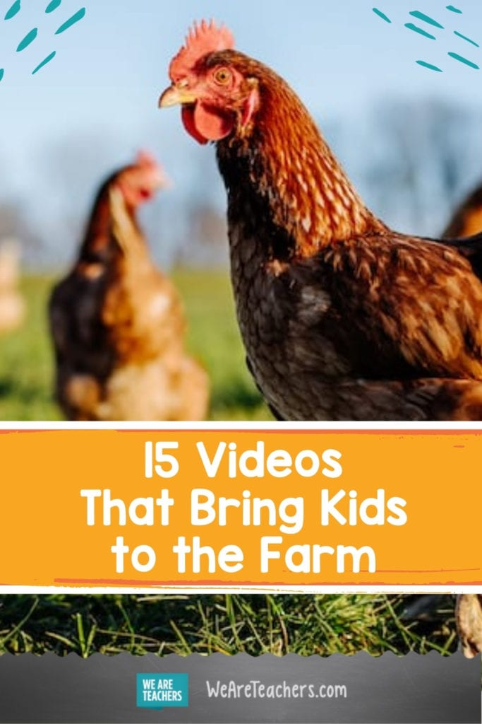 15 Videos That Bring Kids to the Farm