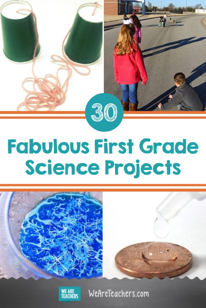 30 Fabulous First Grade Science Projects That Little Learners Will Love