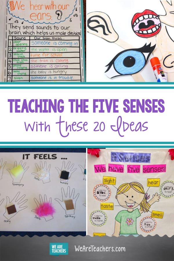 Teach Kids the Five Senses With These 20 Free and Fun Ideas