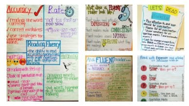Fluency Anchor Charts