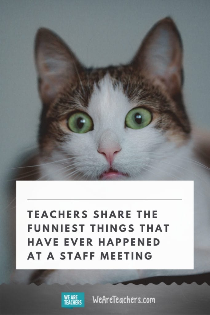 Teachers Share the Funniest Things That Have Ever Happened at a Staff Meeting