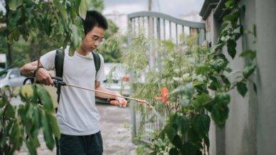 Asian teen using water sprayer on a plant Environmental Volunteer Projects for Teens